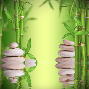 Spa still life with white stones and bamboo sprouts with free space for text